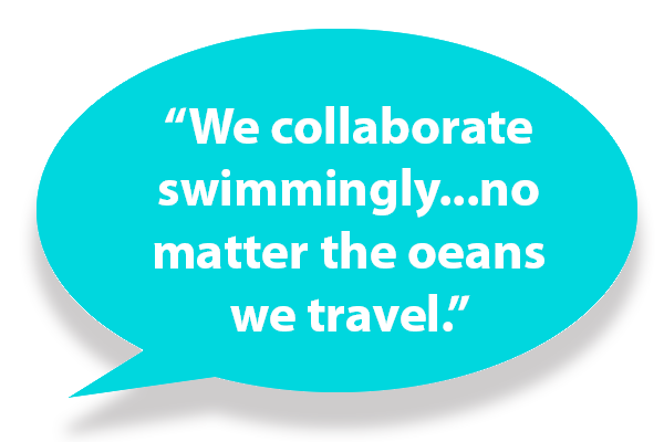 We collaborate swimmingly, no matter the oceans we travel